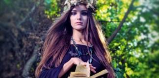Fairycraft, by Morgan Daimler