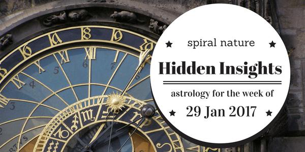 Hidden Insights: 29 January 2017