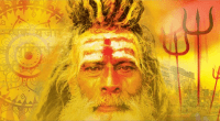 journeys in the kali yuga by aki cederberg, reviewed at spiral nature
