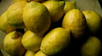 Lemons, photo by Trevor Leyenhorst