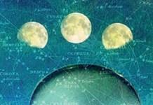 Moon Wisdom, by Heather Roan Robbins