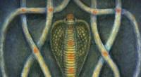Naga Magick, by Denny Sargent