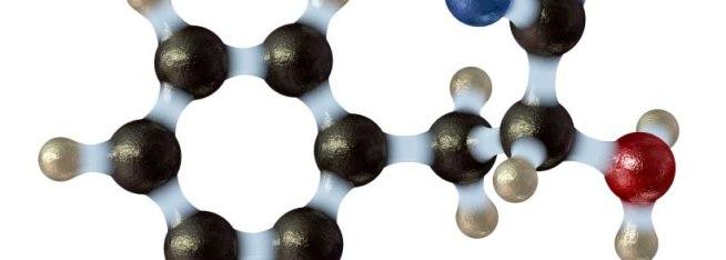Phenylalanine in Spiralyne spirulina