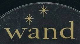 Image result for wand records logo