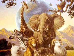Ultimate Guide To Spirit Animals  Power Animals   Totems About Spirit Animals