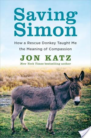A Donkey's Tale:  Saving Simon