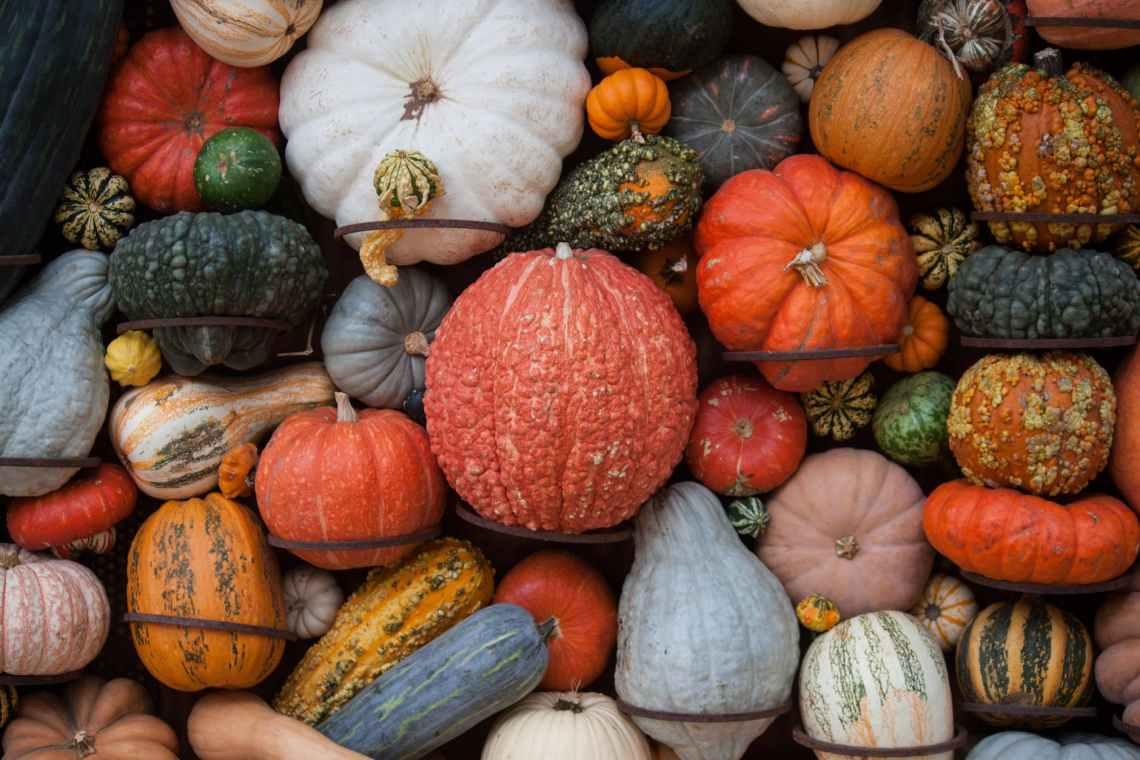 food autumn fall market