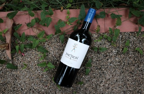 alternative bordeaux blends - neyen colchagua valley