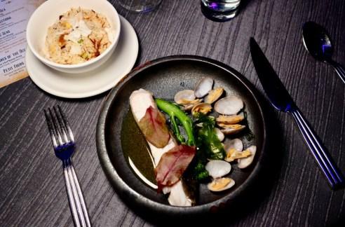 aqua gastronomy shining seas