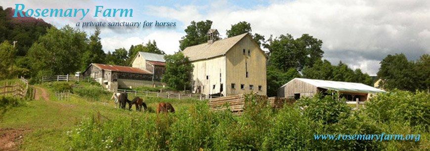 Rosemary Farm Sanctuary