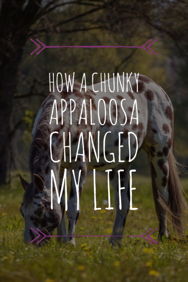 How a Chunky Appaloosa changed my life. Haha! I remember my first horse experience too.