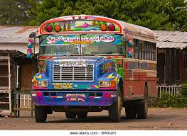 Bus to grocery store