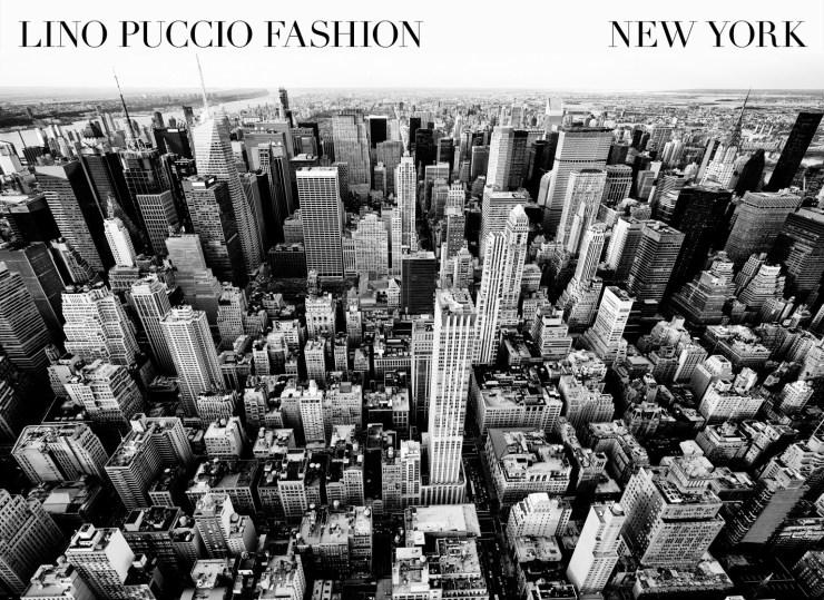 Lino Puccio & Co.