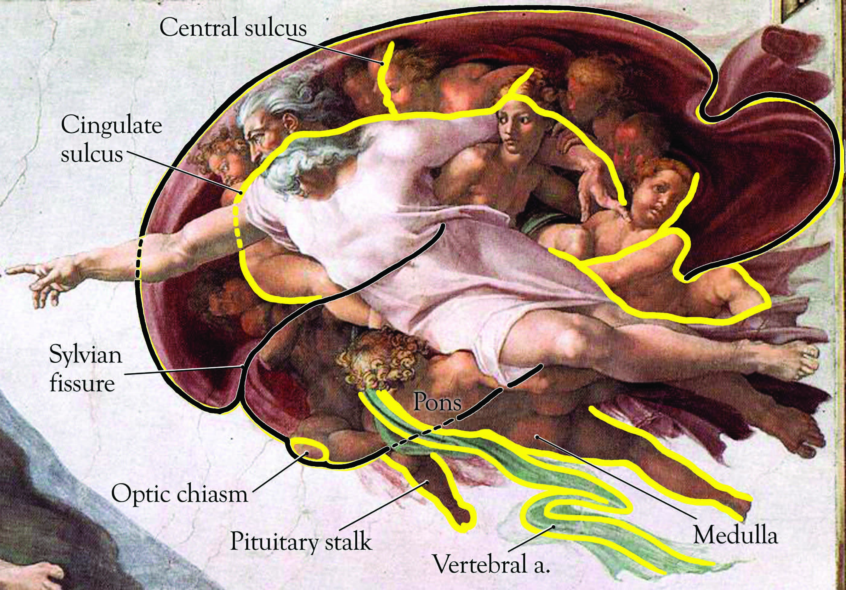 Image result for michelangelo brain painting