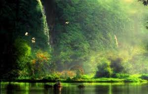 Meditation Paradise