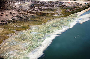 Adelaide to Alice Springs Lake Eyre Tours