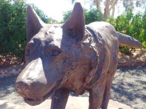 Red Dog Pilbara Tour