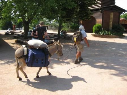 Pilgrims from around the world make their way to Taizé. (Jason Hill photo)