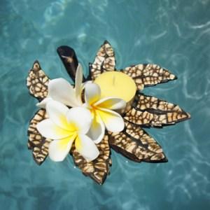 Bloemen & Drijfbloemen