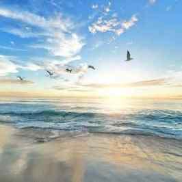 Spirituelles Erwachen Spirituelle Gemeinschaft der neuen Zeit gelebte und moderne Spiritualität Sonnenaufgang über dem Meer