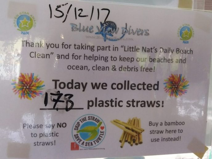 Today we collected 173 straws!
