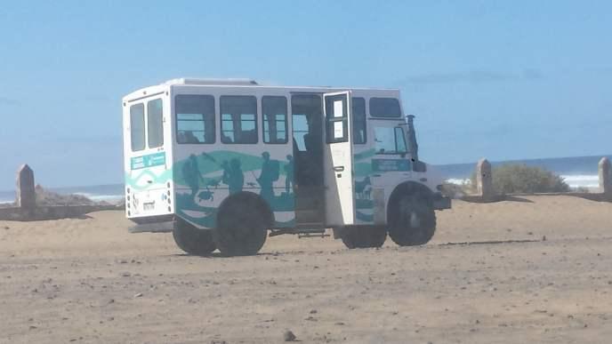 Cofete Beach, lokale bus om het strand te bekijken