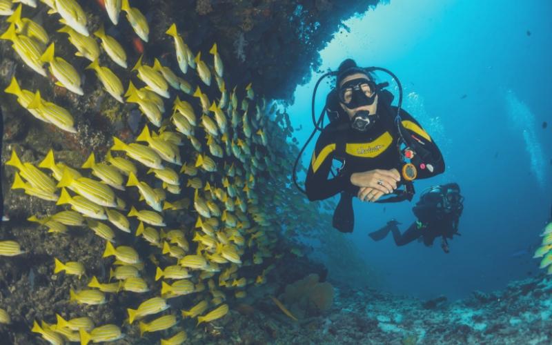 scuba-diving-india