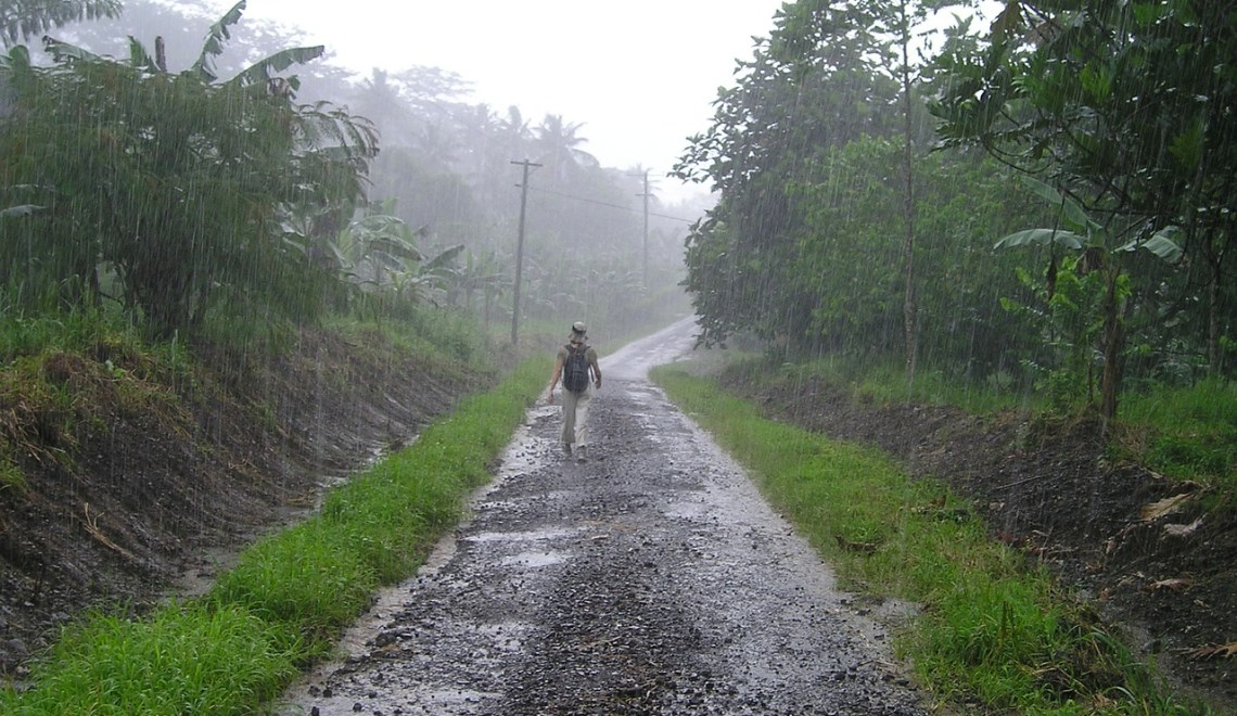 10 essential tips for monsoon travel to Wayanad, Kerala.