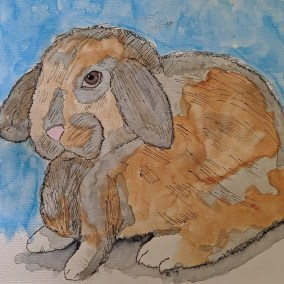 Lop Eared Bunny.jpg