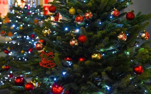 December Delights – Day 15!