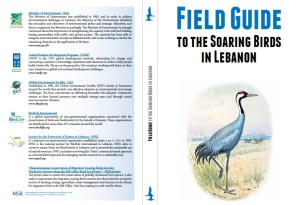 Field Guide to the Soaring Birds