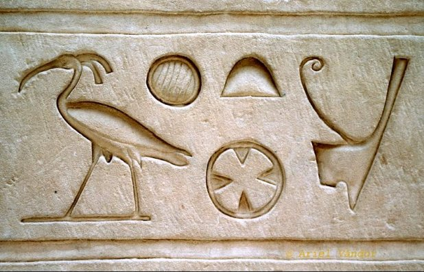 Hieroglyph from the Temple of Edfu, Egypt (ca. 250 BC), unmistakably depicting a Northern Bald Ibis. The 7 birds discovered in Palmyra in 2002 were the last living descendants of those revered by the ancient pharaohs. Photo: Ariel Vándor.