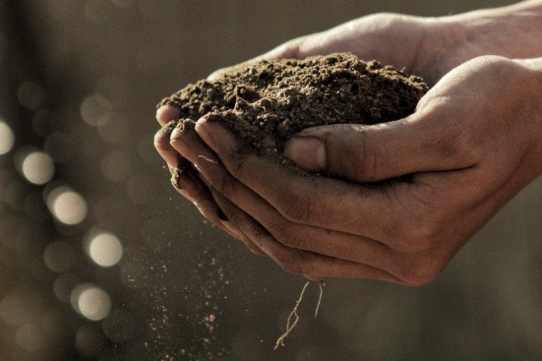 Efficiently Compost Manure