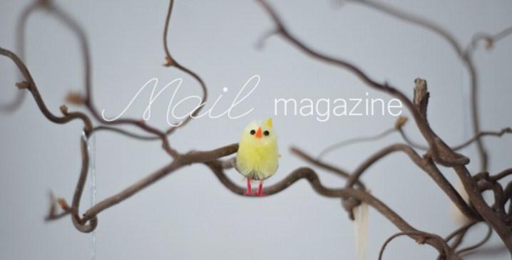 blog_29