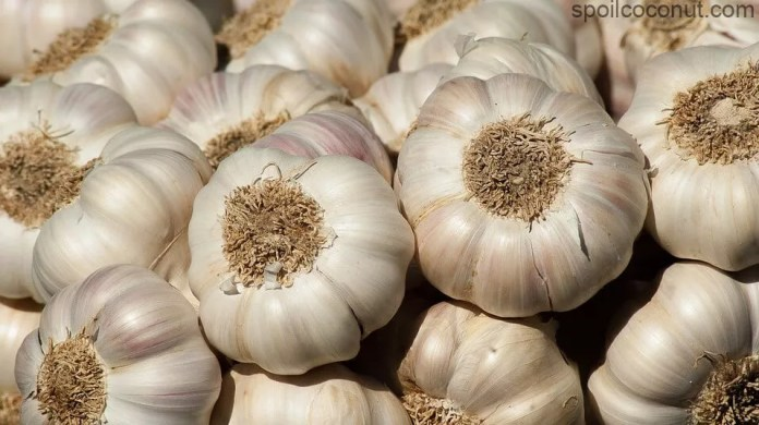 Garlic Qualities To Increase Sexual Ability