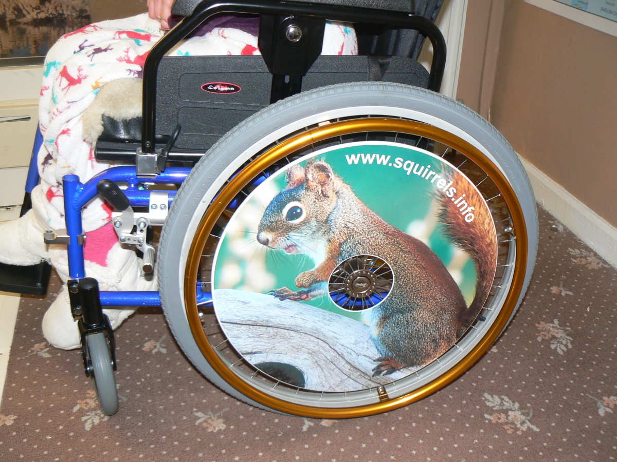 Squirrel Wheelchair Wheel Covers SpokeGuards