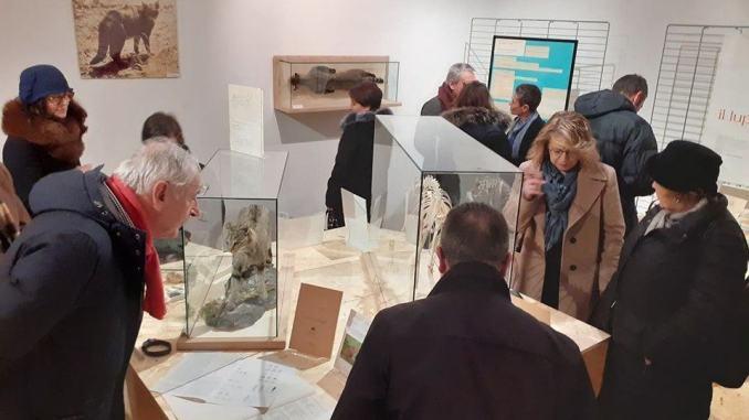 Torna in mostra la 'Collezione Ragni', dal 6 agosto a Palazzo Collicola