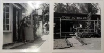 Viola at YAC copy