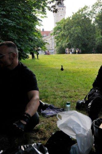 Eine Ente nähert sich von hinten