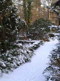 Friedhof Grunewald - Verscheinter Weg