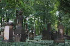 Eliasfriedhof in Dresden (2)