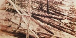 The Tunguska Event – Siberia's Mystery Explosion