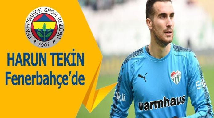 Harun Tekin Fenerbahçe