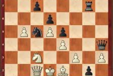 Schach-Ergebnisse