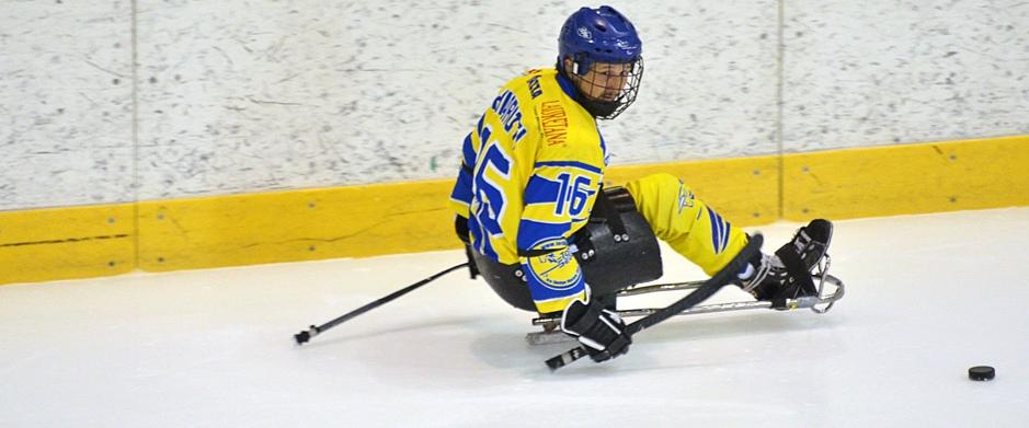 Andrea Chiarotti, Toroseduti, Sochi 2014