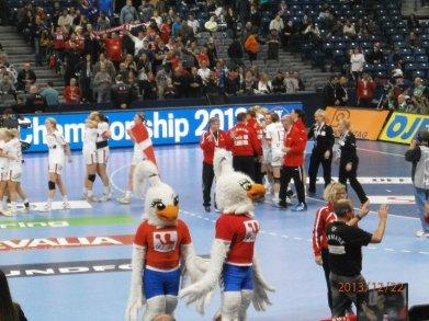 Handball-WM 2013 Serbien - Spiel um Platz 3: Polen vs. Dänemark 26:30 am 22.12.2013 - Foto: SPORT4Final