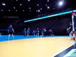 Handball WM 2017 Talk mit Ljubomir Vranjes über Favoriten und Veszprem - Foto: SPORT4FINAL