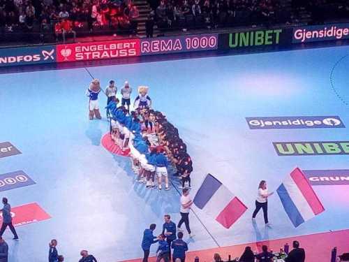 Handball EM 2018 - Halbfinale Frankreich vs. Niederlande - AccorHotelsArena Paris - Foto: SPORT4FINAL