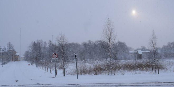 Снегопад в Хаапсалу