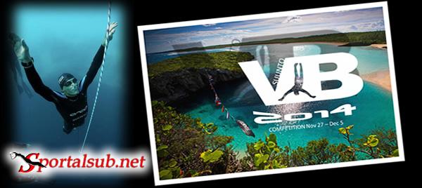 verticalblue2014
